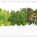 Click & Grow: il giardino smart per coltivare erbe aromatiche in casa