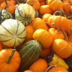 Due ricette (saor e tecia): la zucca alimento di stagione e toccasana
