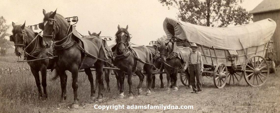 Un'immagine d'epoca del carro Conestoga